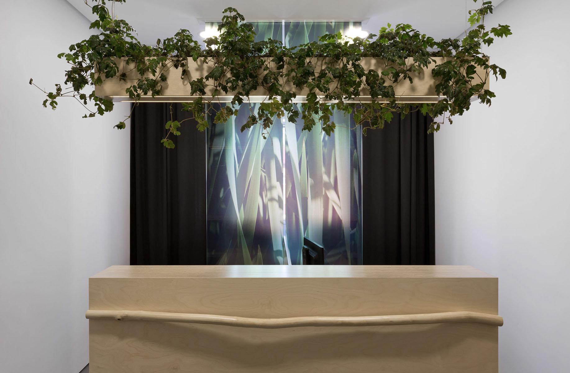 подвесной светильник Light plants
