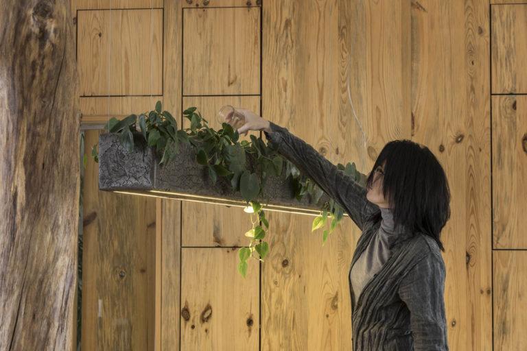 подвесной светильник  TERRA
